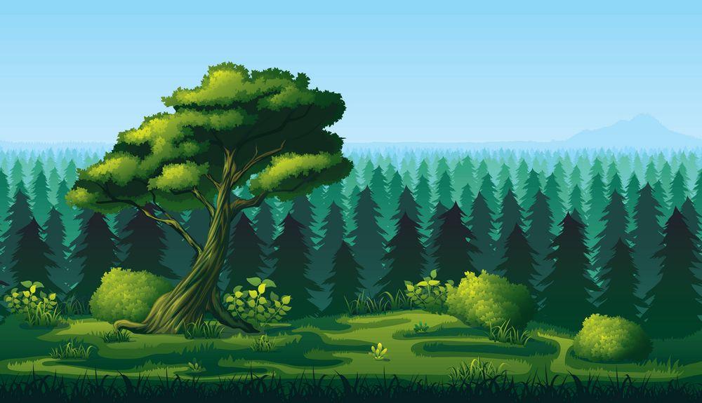 【优秀作文展】美妙的森林